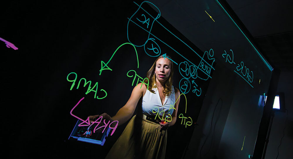 Professor Jennifer Bryant using a lightboard.